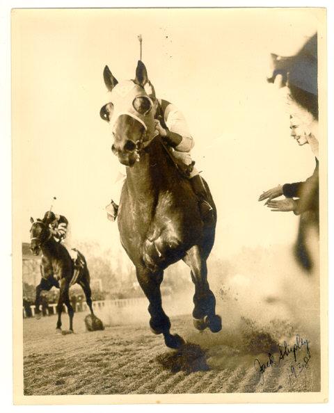 g22653_u20164_3927_seabiscuit_race_horse_1